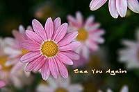 ポストカード文字入り「See You Again」のフォトカードポストカードハガキはがき絵葉書postcard-