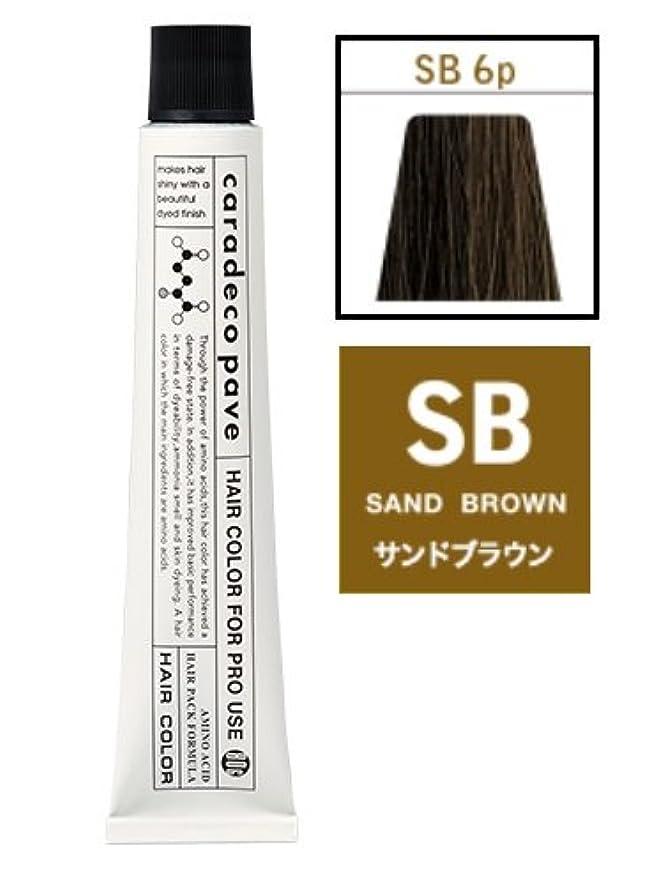 貼り直すアレイミシン目中野製薬 パブェ サンドBr 6p 80