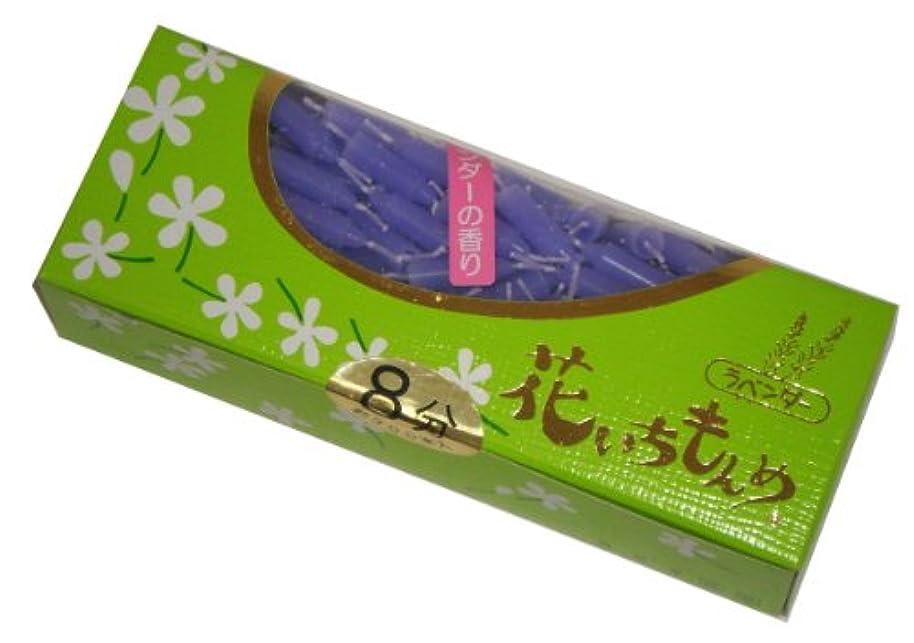 香港急速な発症佐藤油脂のローソク 花いちもんめ ラベンダー 約300本 8分