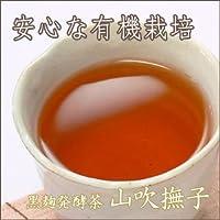 静岡茶 有機・黒麹発酵茶 「山吹撫子(やまぶきなでしこ) 」《ティーパック》