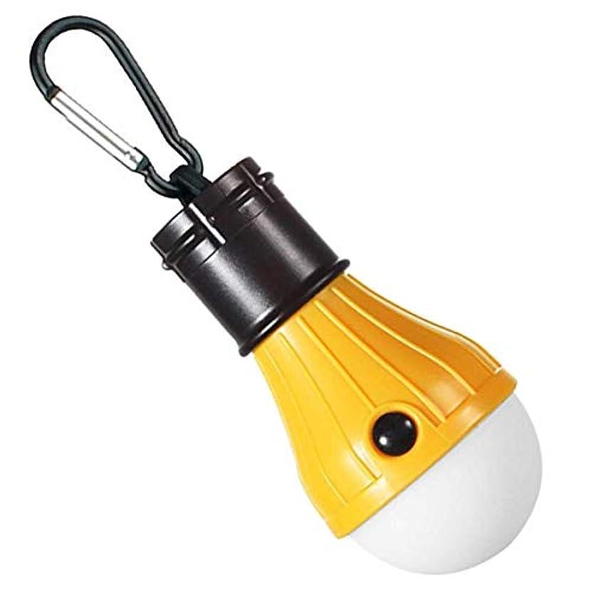 準備ベスビオ山電気技師HANGING LIGHT