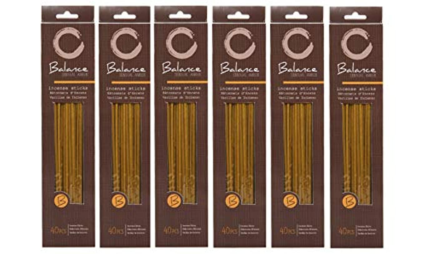 誰も寝室を掃除する穴Hosley 's Sensual Amber (バランス) Highly Fragranced Incense、240 Incense Sticks/約240 gm。手Fragranced、Infused with Essential...