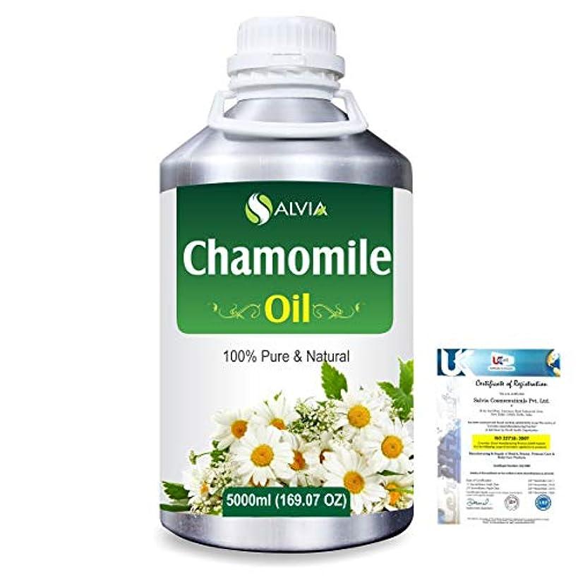 イタリックおなかがすいた加入Chamomile (Matricaria chamomile) 100% Natural Pure Essential Oil 5000ml/169fl.oz.