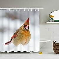 シャワーカーテン 浴室カーテン ユニットバス カーテン お風呂 バスかーてん 雪の冬の枢機卿の鳥防水 防カビ おしゃれ 清潔感 速乾 軽量 取付簡単 お手入れ簡単 洗面所 バス用品 カーテンリング付