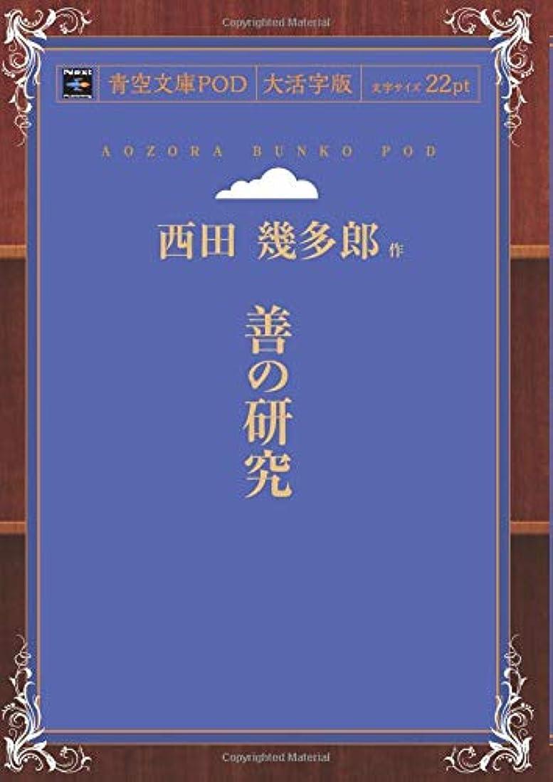 パラナ川再生スタジアム善の研究 (青空文庫POD(大活字版))