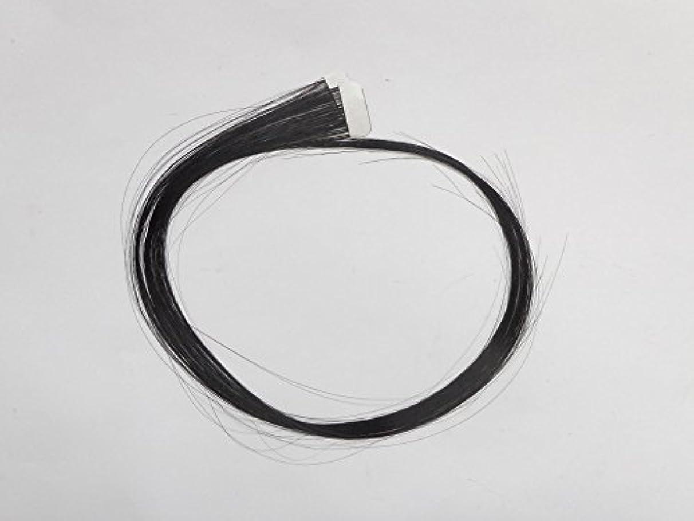 ハロウィンであること象簡単エクステ テープエクステンション シールエクステンション 2枚入 10色カラー (ブラック)