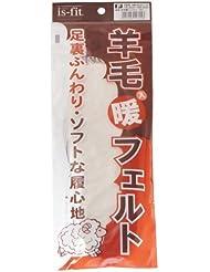 is-fit(イズフィット)  羊毛入り暖フェルト 子供用 16.0-22.0cm 白