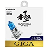 カーメイト 車用 ハロゲン ヘッドライト GIGA ザ・ブループラス H3 5600K 750lm BD327N