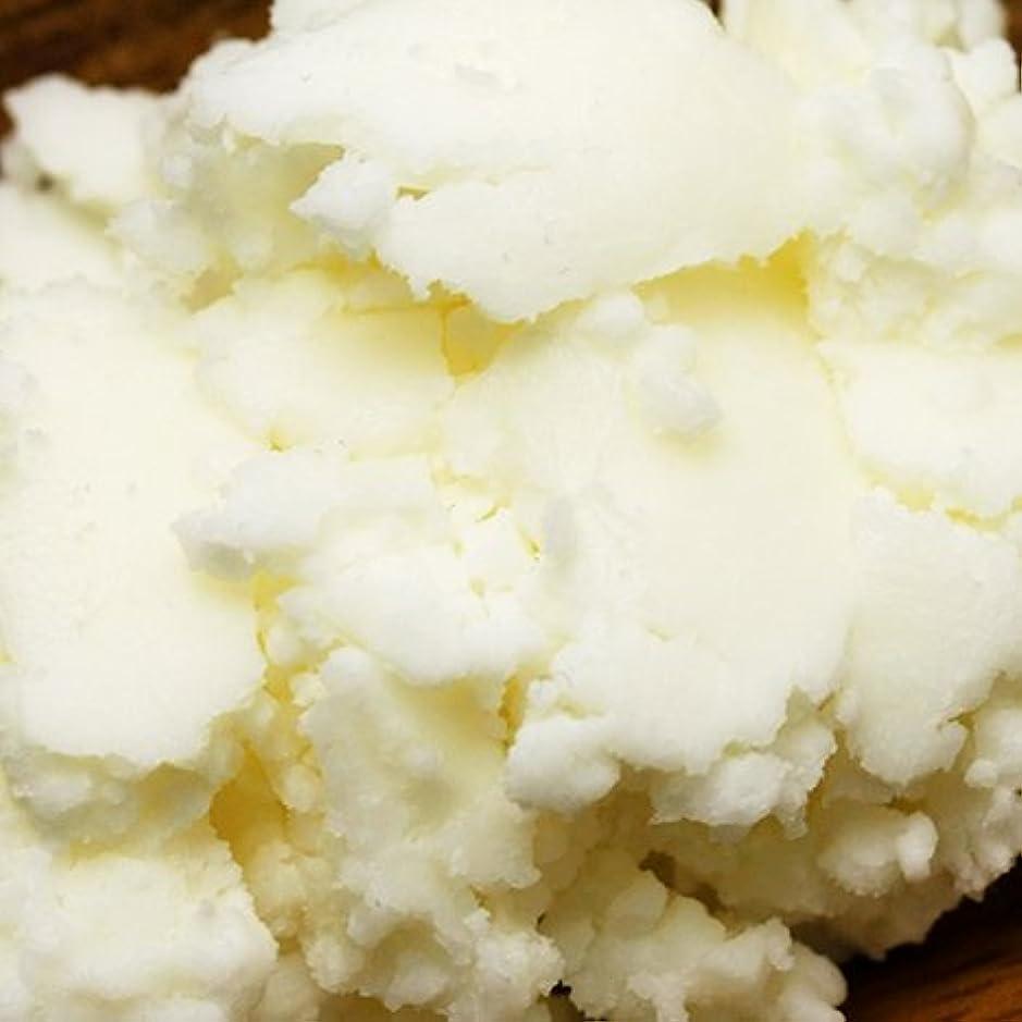 溶融廃止するクレデンシャルマンゴーバター 100g 【手作り石鹸?手作りコスメに最適】