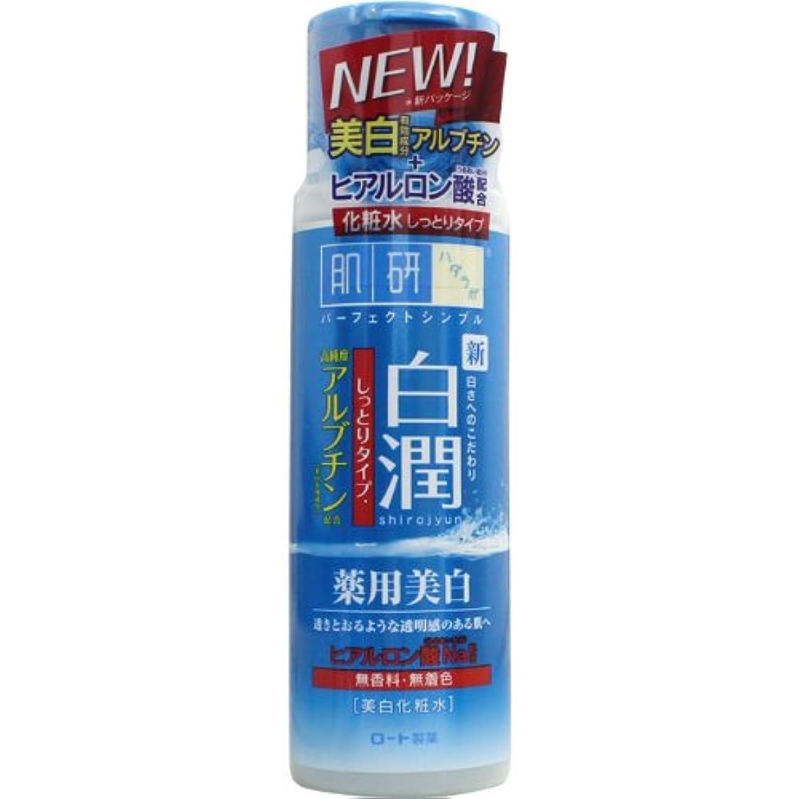 ペルメル混合したブート【医薬部外品】肌ラボ 白潤 薬用美白化粧水 しっとりタイプ 170mL