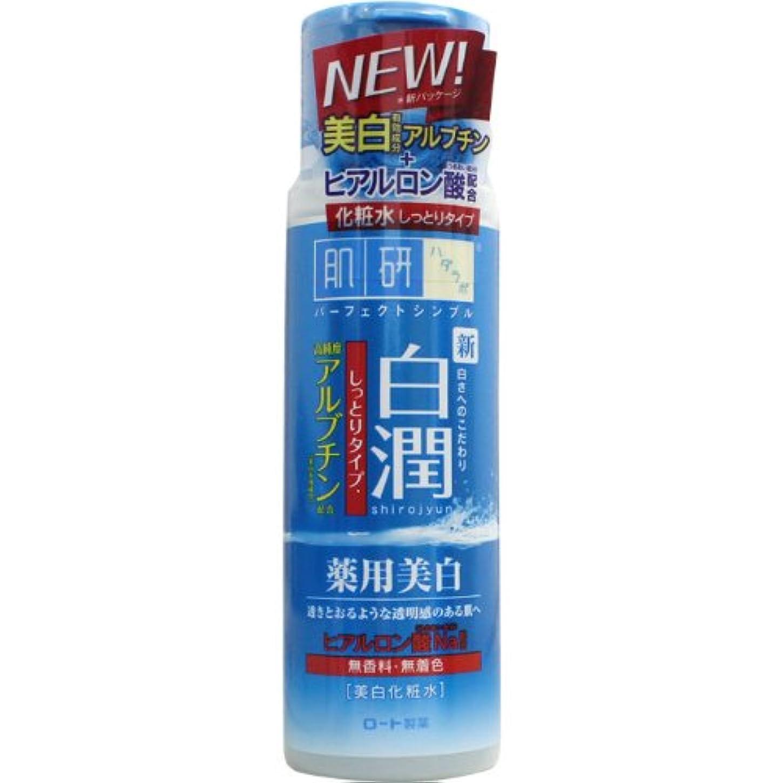 何十人も南方のたくさん【医薬部外品】肌ラボ 白潤 薬用美白化粧水 しっとりタイプ 170mL