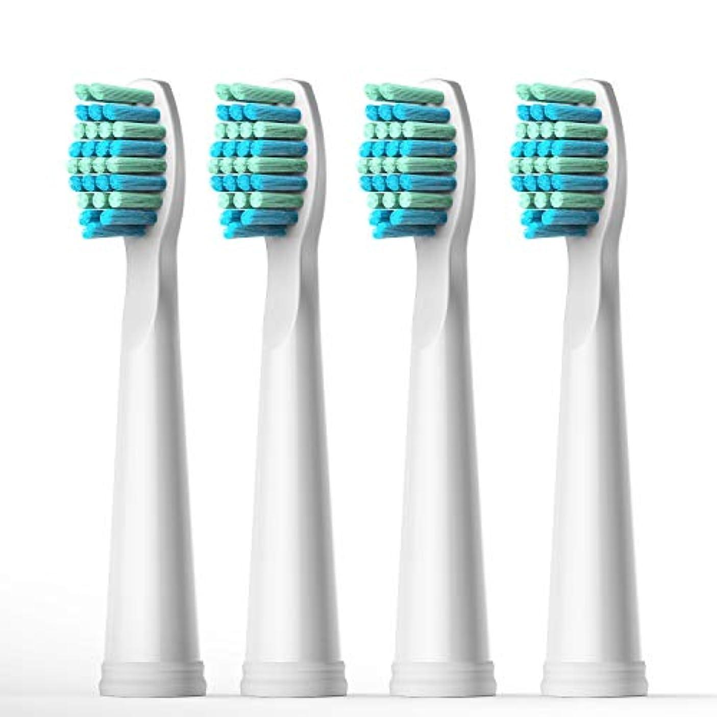 出席するマイナスマサッチョFairywill 電動歯ブラシ用 替ブラシ 4本入 互換ブラシ ブラシヘッド やわらかめ BH01