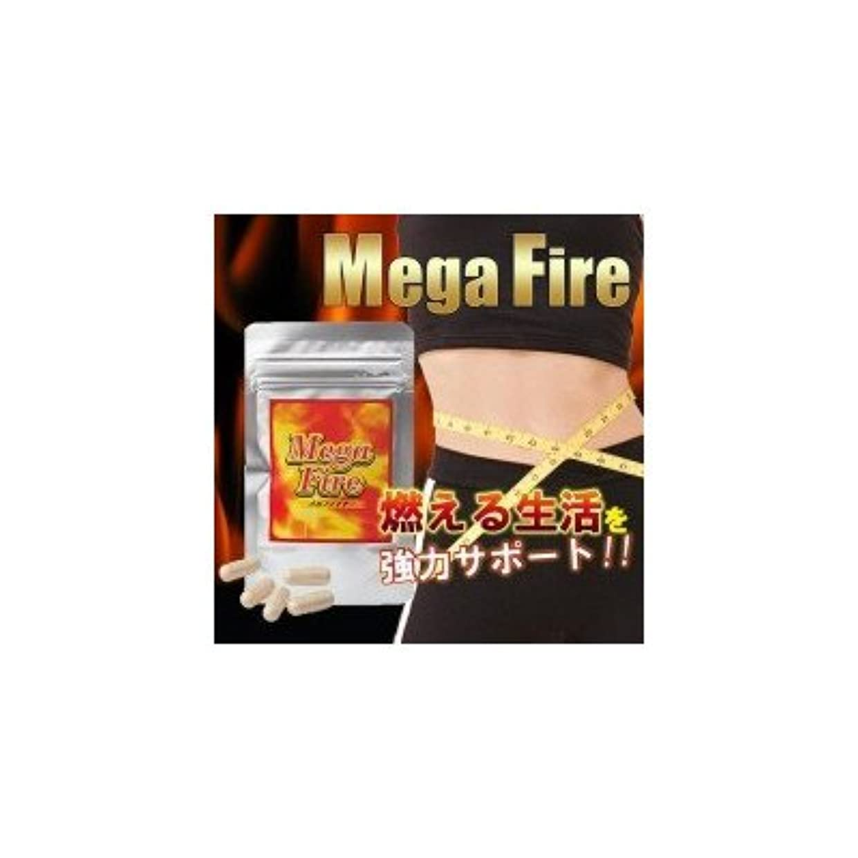 パーツサラダリスキーなMega-Fire(メガファイア) 13.9g(377mg(1粒内容量300mg)×37カプセル)