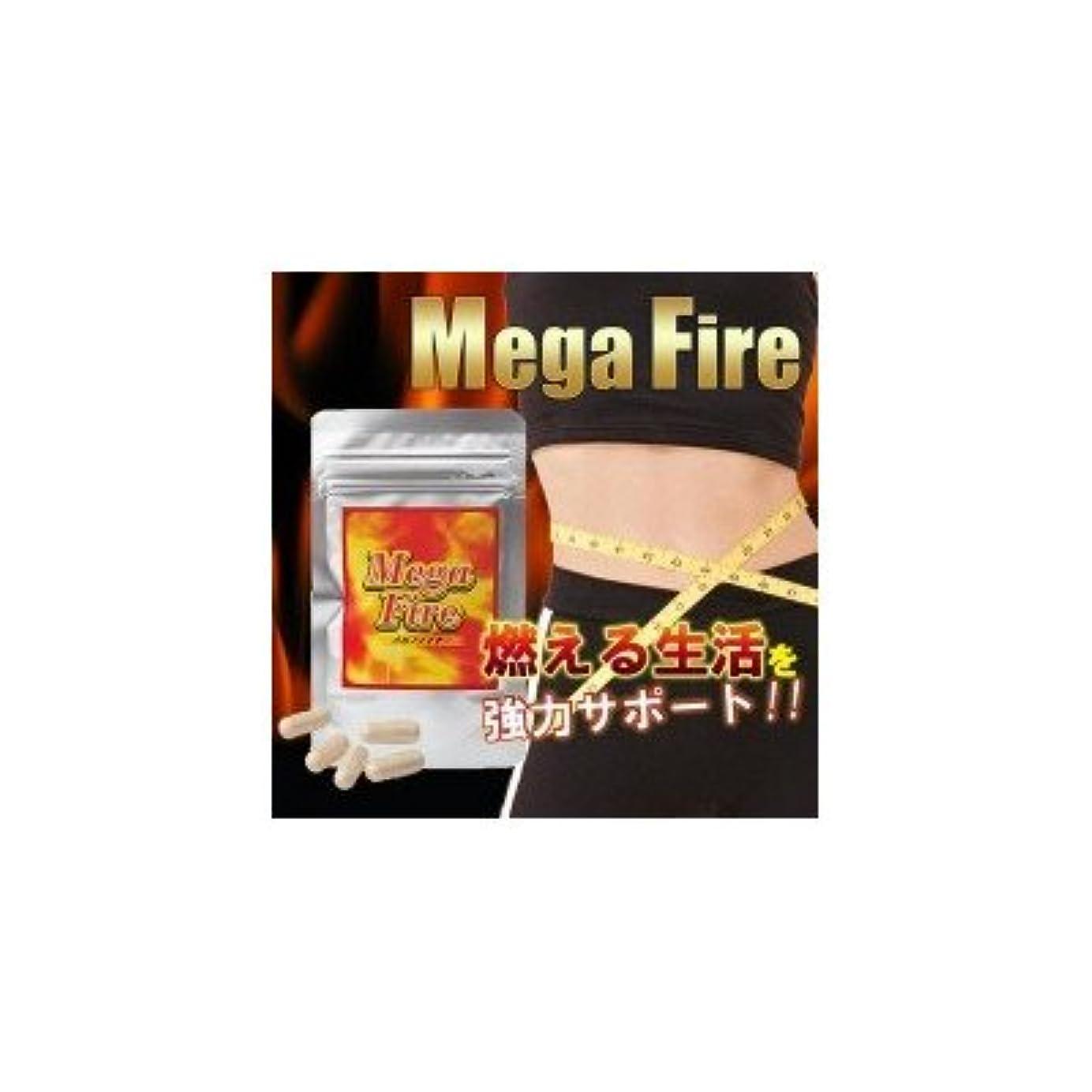序文舗装する認証Mega-Fire(メガファイア) 13.9g(377mg(1粒内容量300mg)×37カプセル)