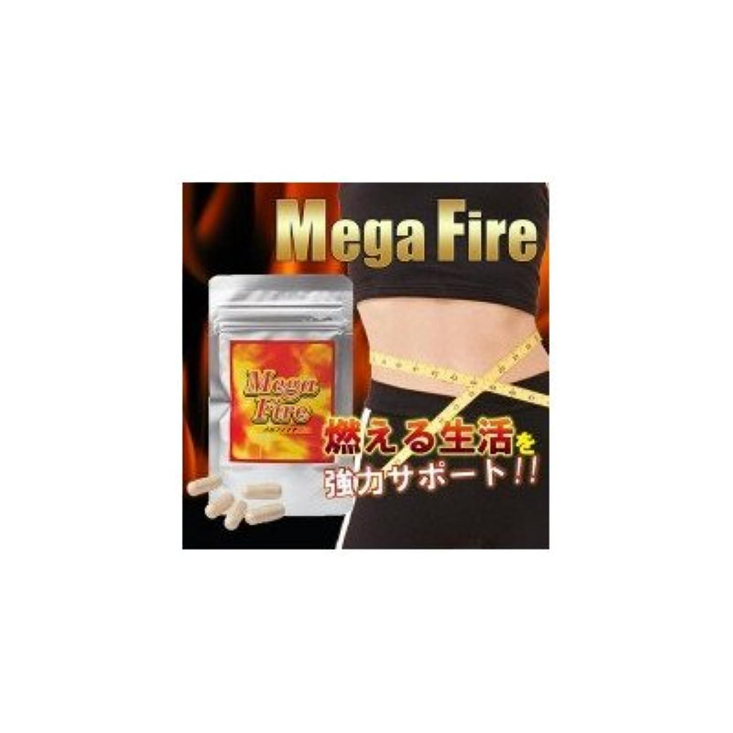 難民偶然虫Mega-Fire(メガファイア) 13.9g(377mg(1粒内容量300mg)×37カプセル)