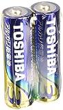 アルカリ乾電池 単3形 100本パック LR6L 100P