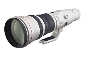Canon 単焦点超望遠レンズ EF800mm F5.6L IS USM フルサイズ対応