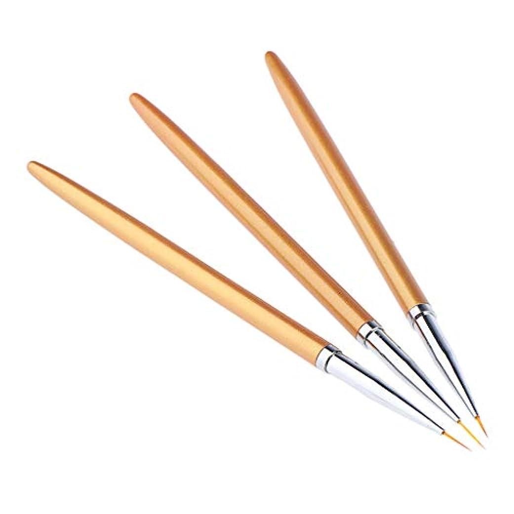 出演者誤解する回転するネイルアートペン ネイルブラシセット ネイルアートブラシ 絵画ペン 3本入り
