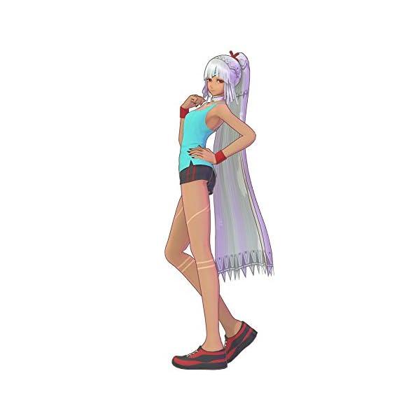 プレミアム限定版 Fate/EXTELLA L...の紹介画像7