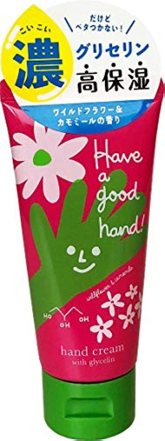 はげ受粉者冷笑するハヴァグッドハンド モイストハンドクリーム ワイルドフラワー&カモミールの香り