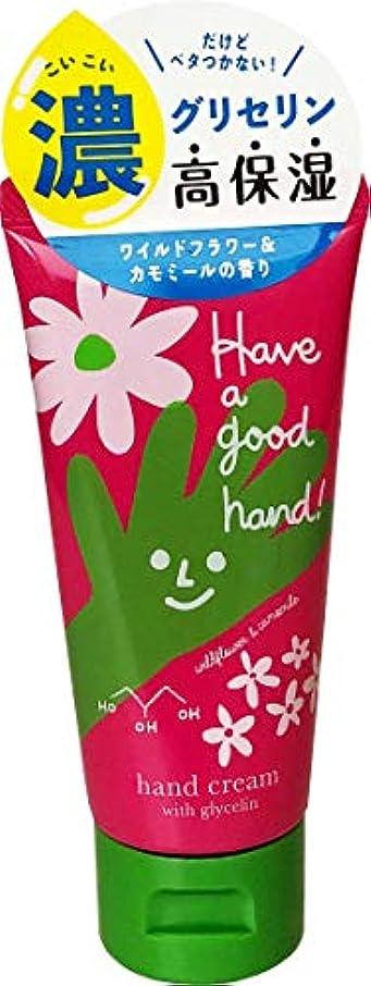 キャンディー事前に干し草ハヴァグッドハンド モイストハンドクリーム ワイルドフラワー&カモミールの香り