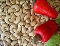5個の新鮮なタイカシューナッツフルーツ種子屋内盆栽ツリー熱帯ノベルティ