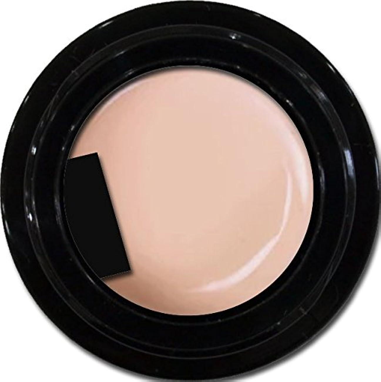 動かない適度な熱意カラージェル enchant gel color gel S201 Peach Sheer 3g/ エンチャントジェル カラージェル S201ピーチシアー 3グラム