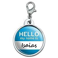 イザヤこんにちは、私の名前は小さな金属IDのペットの犬のタグ