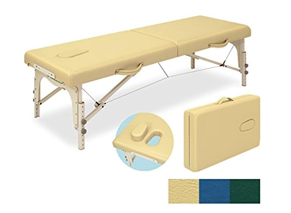 北手術資格ローズ60 TB-381-01 (メディグリーン)