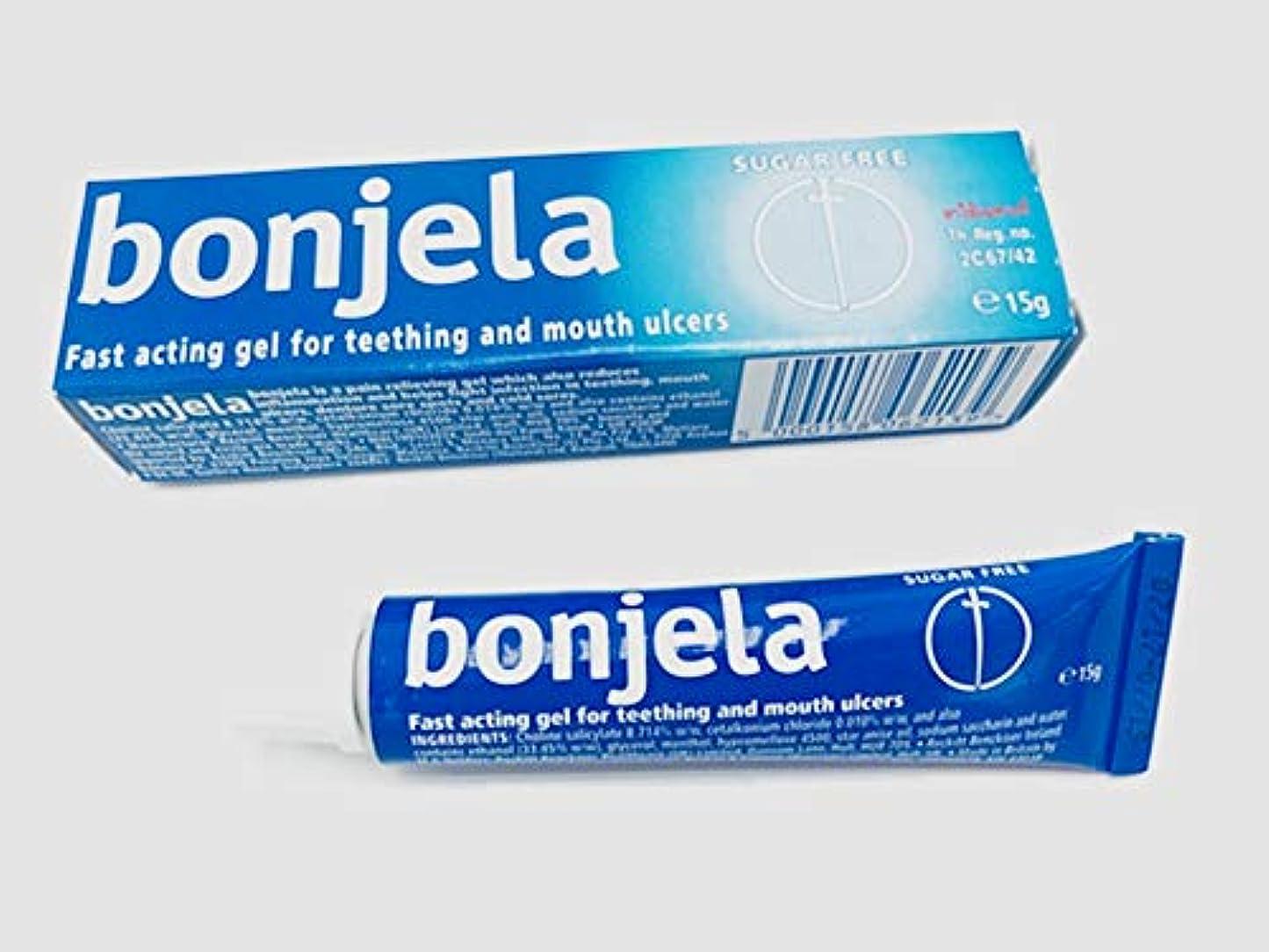 溶岩ランドマークライバルBonjela Tooth and Mouth Ulcer 歯と口の潰瘍 15g.