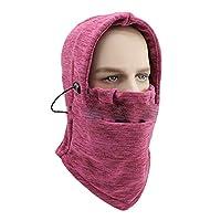 [RADISSY] 防寒マスク ネックウォーマー フルフェイス 冬 暖か バイク 自転車 アウトドア (フリーサイズ, ワインレッド)