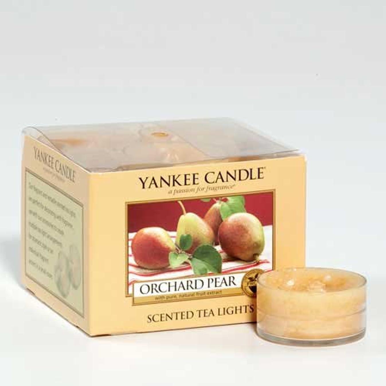 詳細に手入れ便益Yankee Candle 12香りつきTealights – Orchard Pear