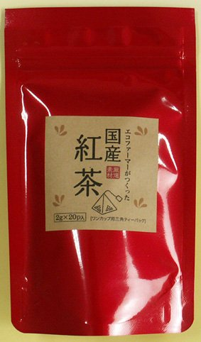 エコファーマーがつくった国産紅茶2g?20p ティーバック 大分県産