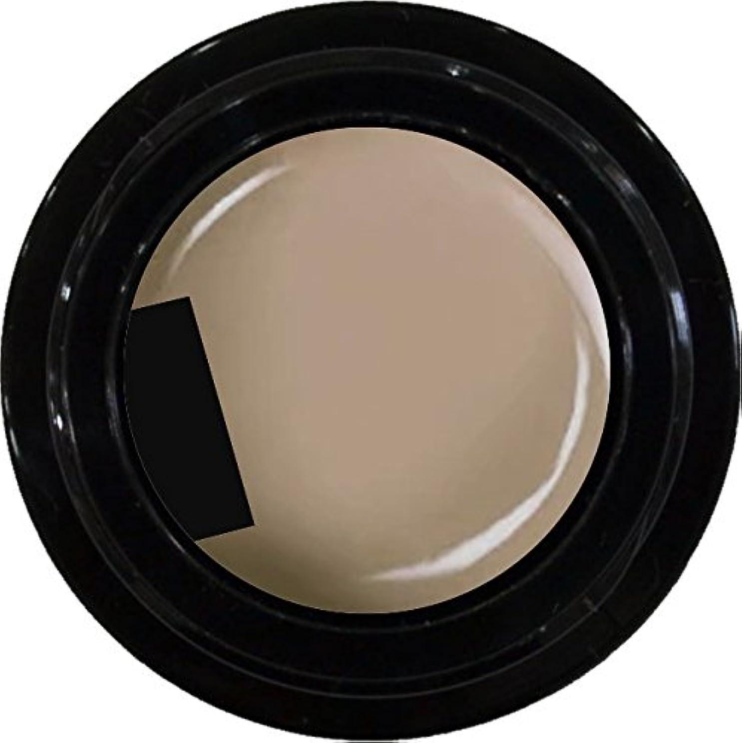 ホバーパレード成熟したカラージェル enchant color gel M102 CafeLatte 3g/ マットカラージェル M102 カフェラテ 3グラム