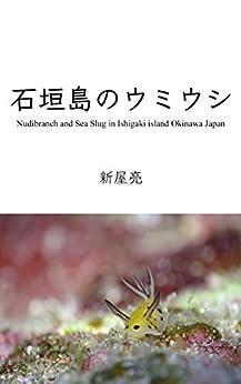 [新屋 亮]の石垣島のウミウシ