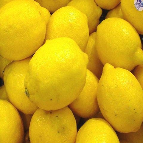 皮ごと安全(皮ごと使える輸入レモン 10kg サイズ込 約60~110個 クール便)防腐剤・ワックス不使用レモン 青果