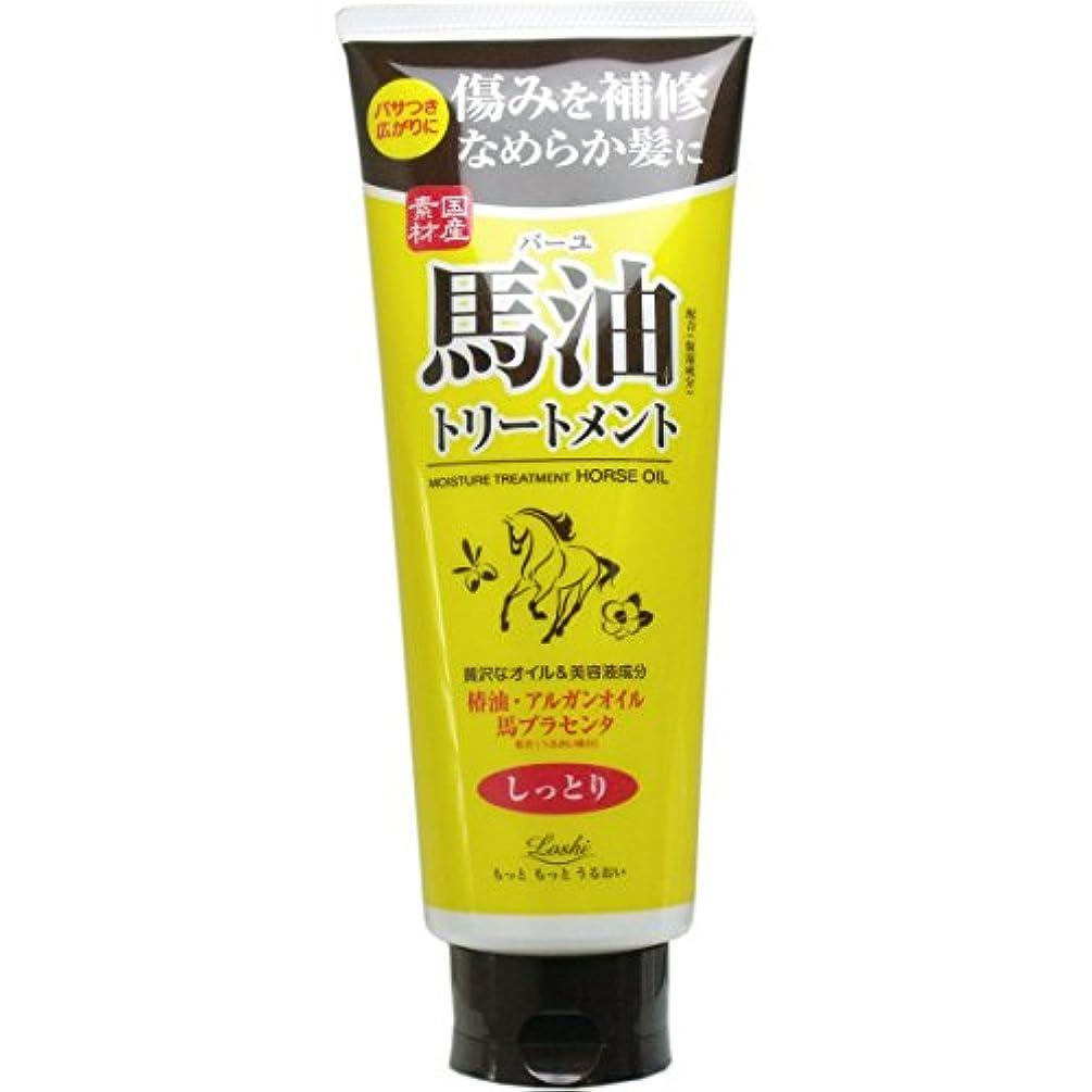【まとめ買い】ロッシモイストエイド オイルヘアトリートメント 馬油 270g【×2個】