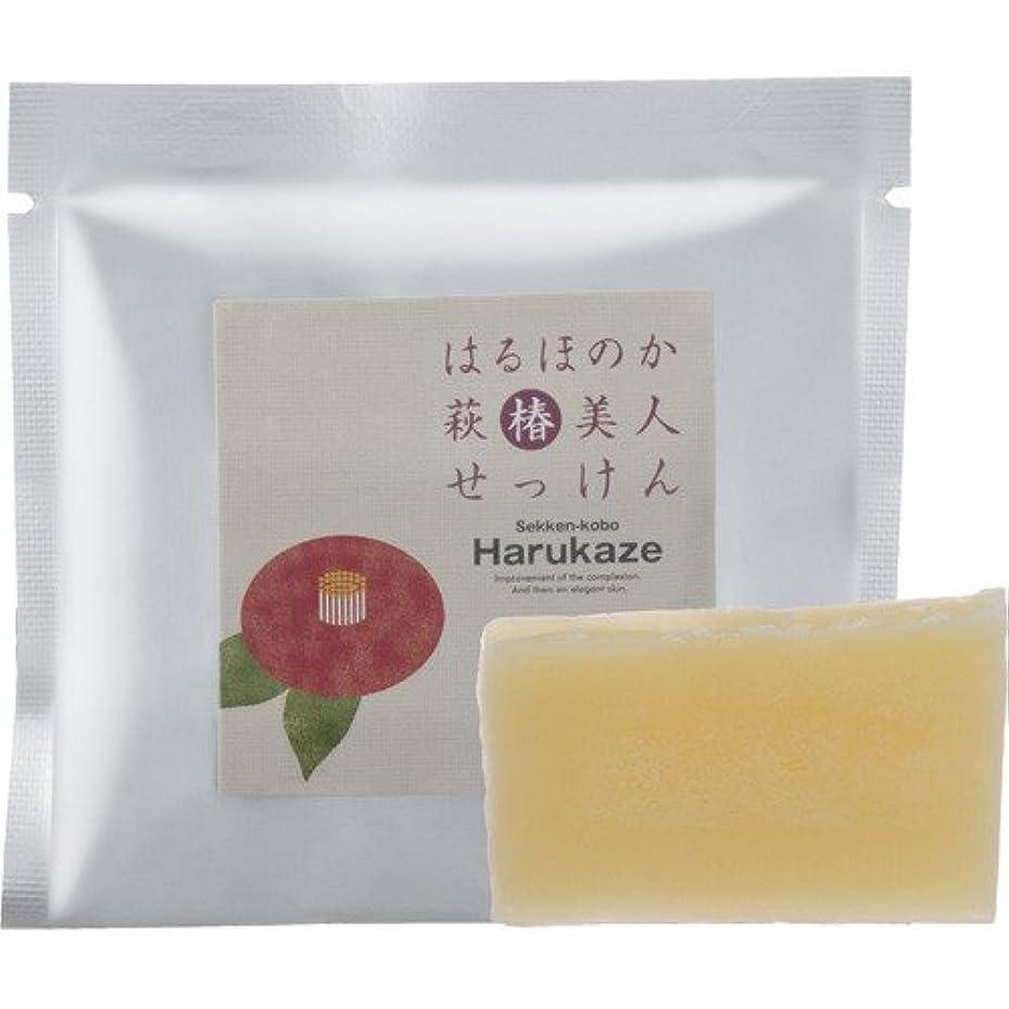 豆腐プラカード野心的はるほのか萩椿美人石けん15g