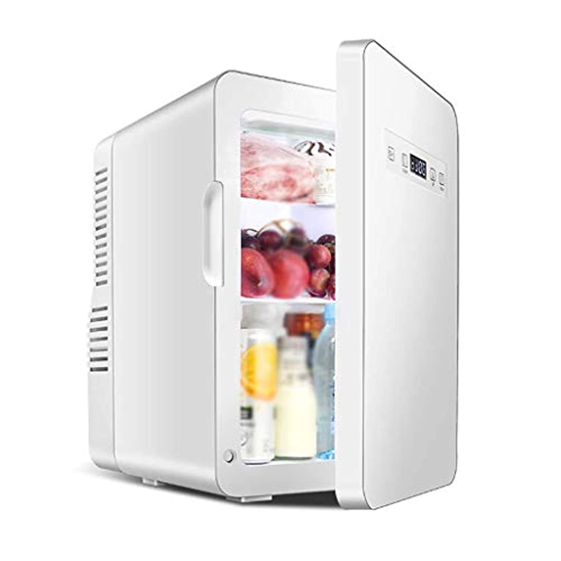 自然邪悪な草ミニ冷蔵庫電気クーラー(20/22リットル)冷蔵ミニ冷蔵庫寮の車の冷蔵庫