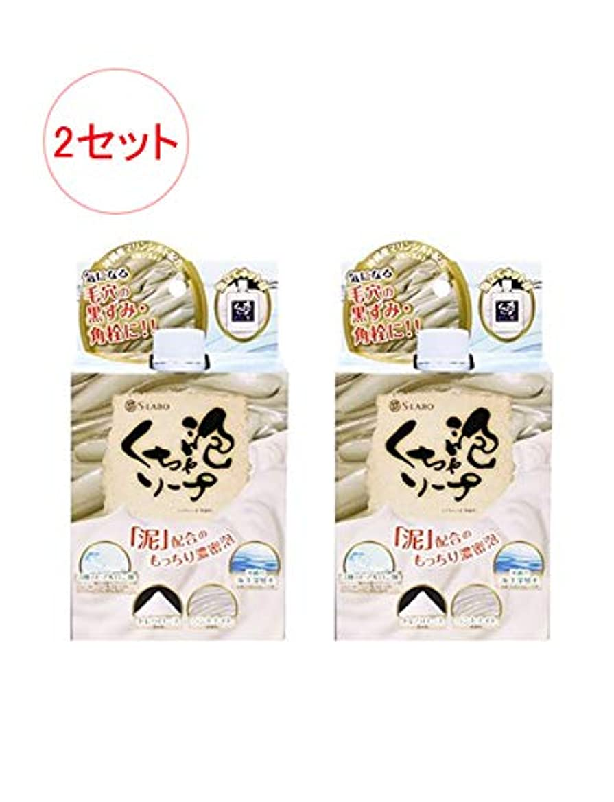 ステンレスカストディアンアーチ日本製 モコモコくちゃ泡ソープ 100g x 2セット