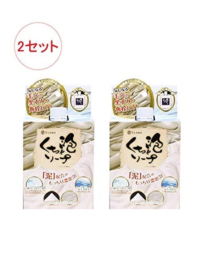 コウモリ最大限カーテン日本製 モコモコくちゃ泡ソープ 100g x 2セット