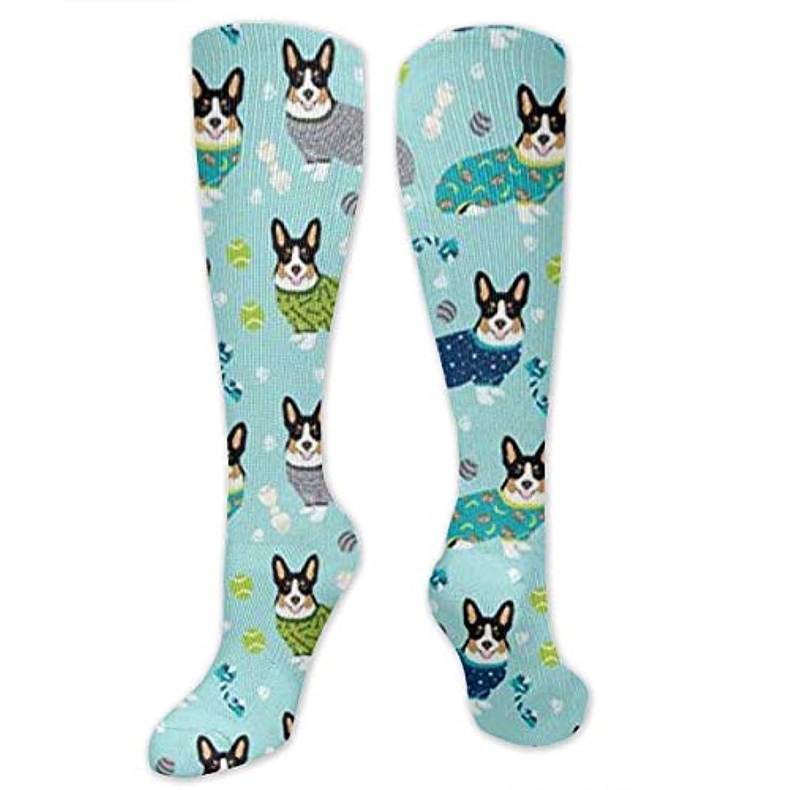 不透明な関連するハブブ靴下,ストッキング,野生のジョーカー,実際,秋の本質,冬必須,サマーウェア&RBXAA Dog Swim On The Pool Socks Women's Winter Cotton Long Tube Socks Cotton...