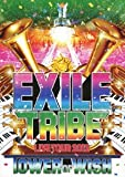 EXILE TRIBE LIVE TOUR 2012 TOWER OF WISH(2枚組)[RZBD-59227/8][DVD]