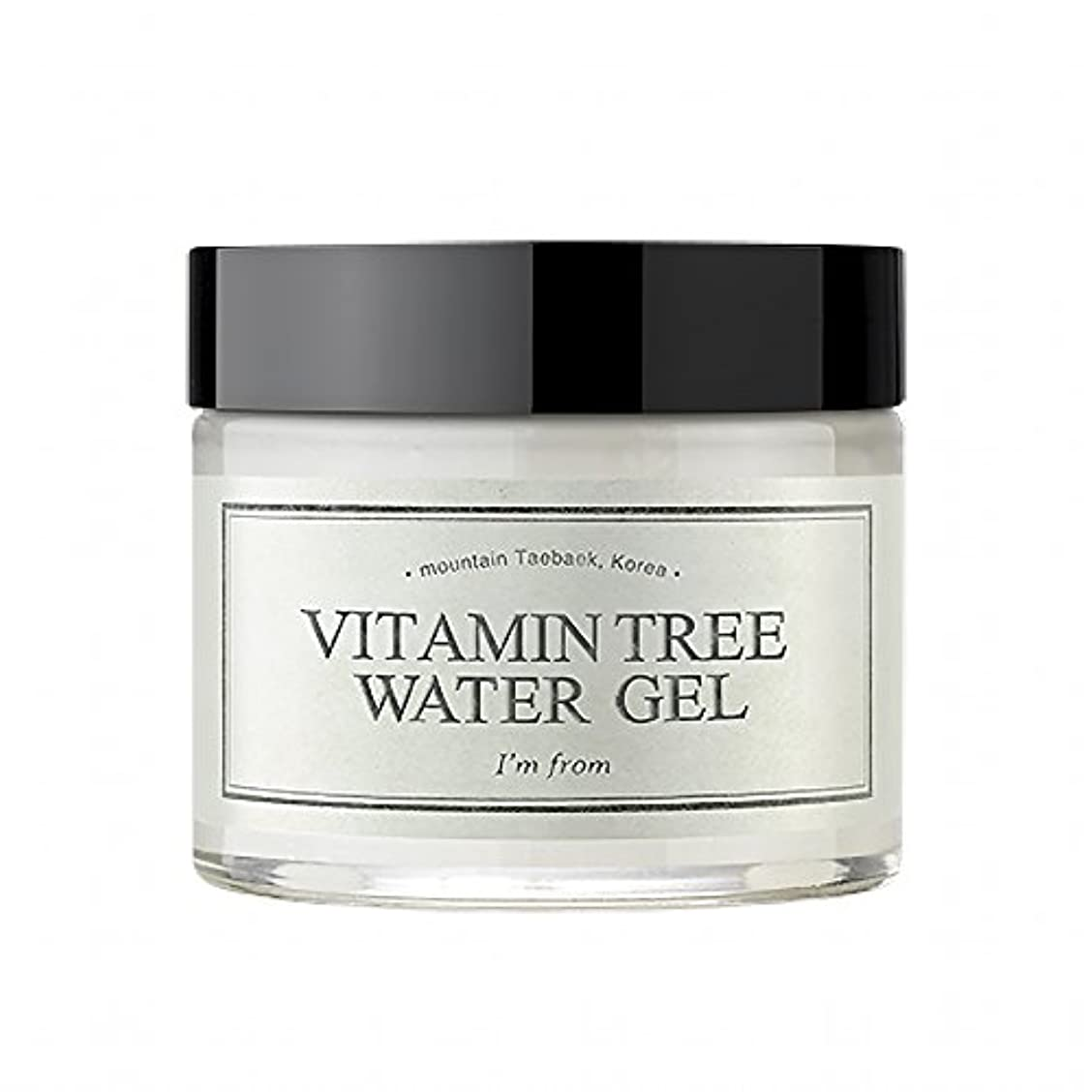 知覚もっともらしいアカデミー[I'M FROM] Vitamin Tree Watergel [並行輸入品]