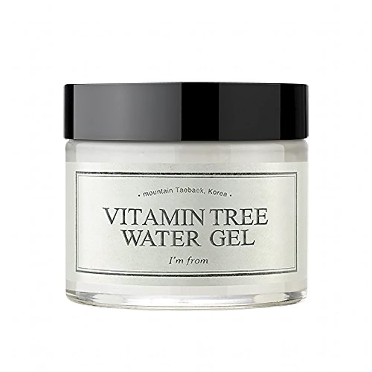 [I'M FROM] Vitamin Tree Watergel [並行輸入品]