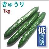 きゅうり1kg(約10本)
