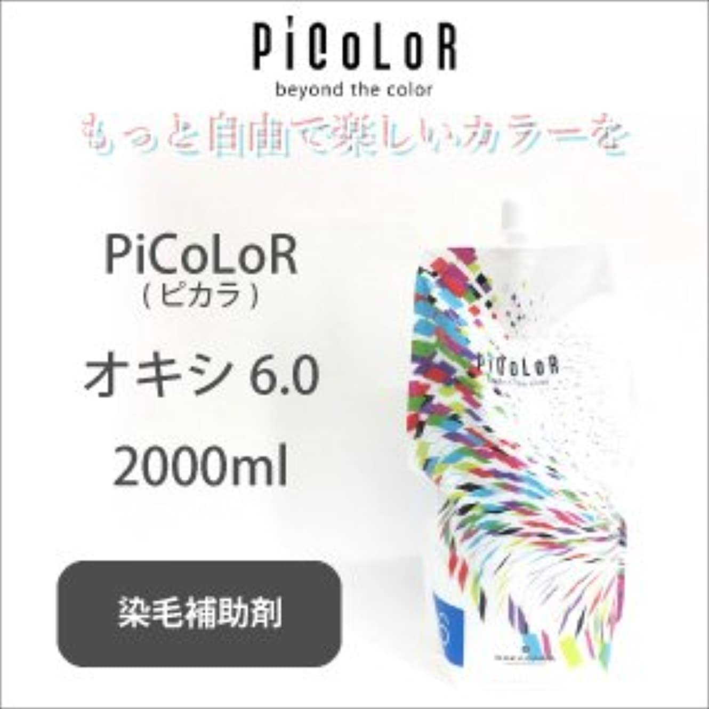 シャーロットブロンテゴシップムスムコタ ピカラ オキシ 6.0 2000ml