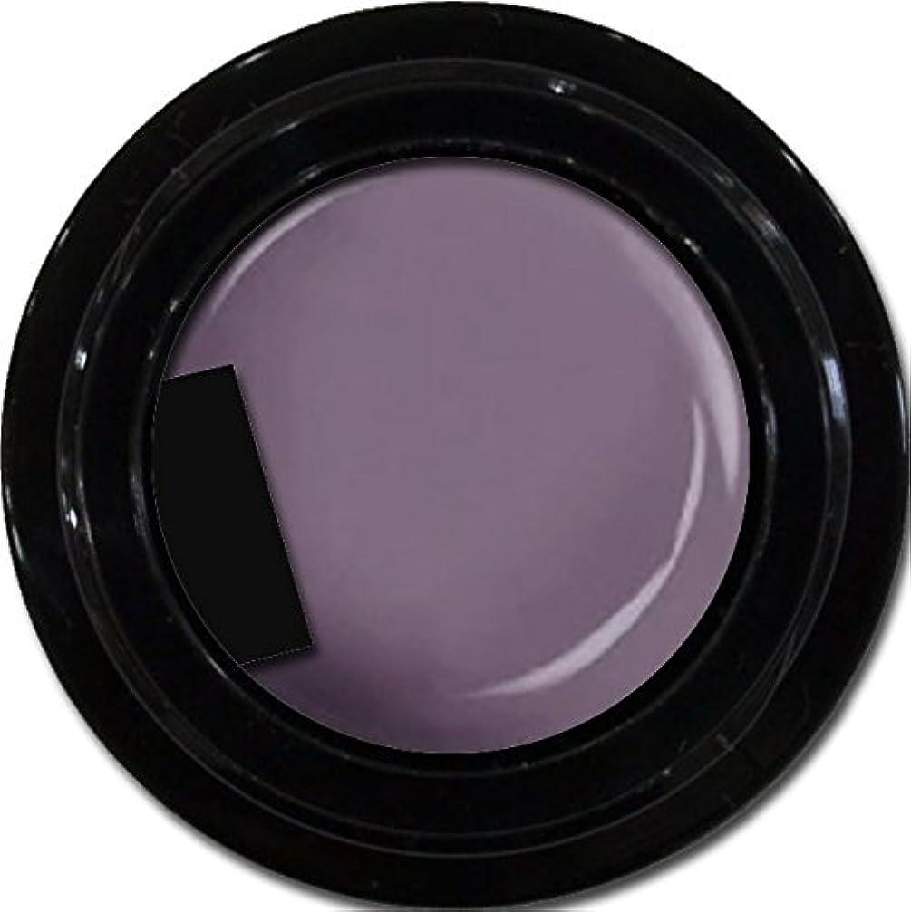 我慢する医師サスティーンカラージェル enchant color gel M507 KyotoMurasaki 3g/ マットカラージェル M507 京都むらさき 3グラム