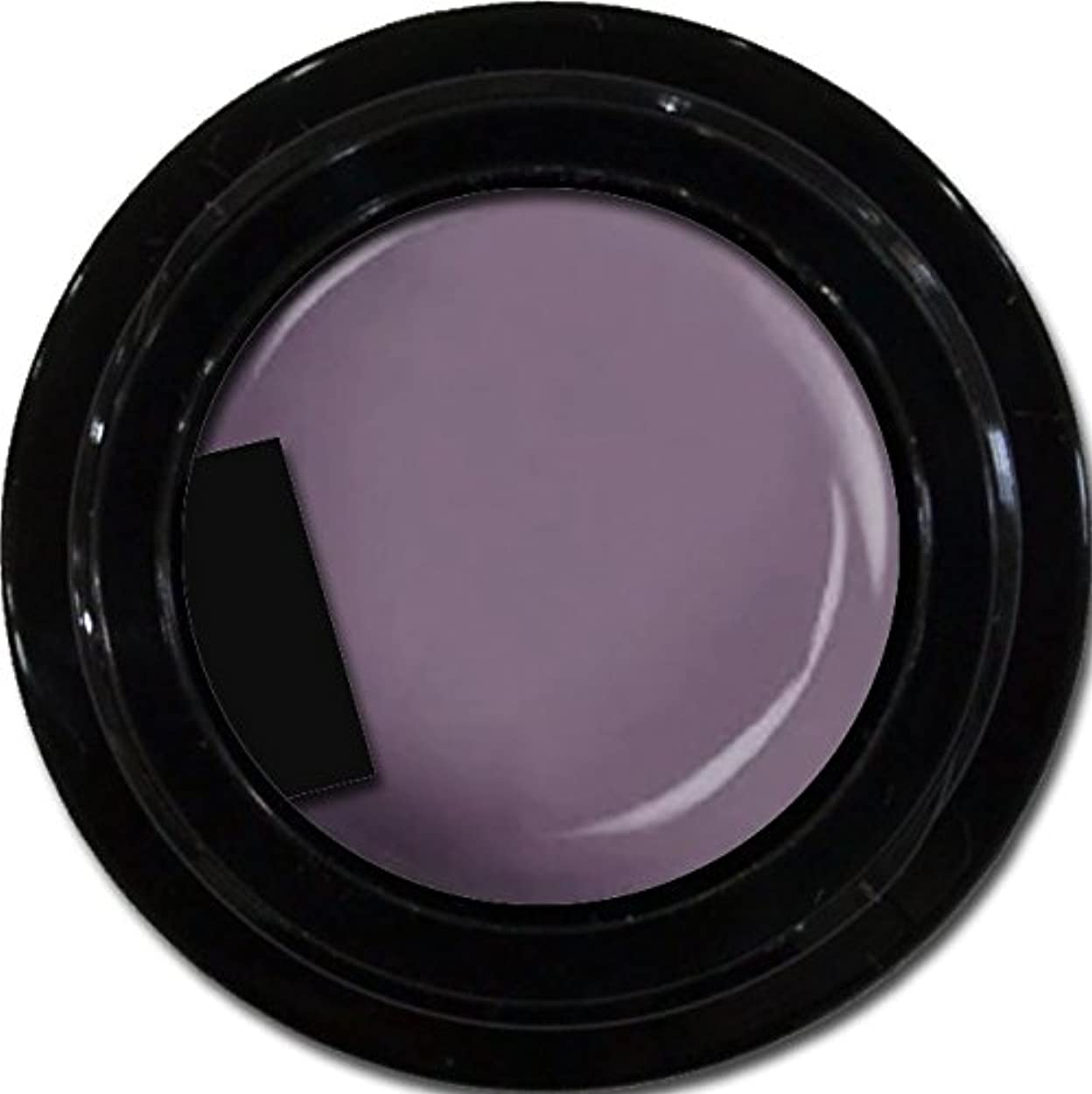 カメレクリエーション繊細カラージェル enchant color gel M507 KyotoMurasaki 3g/ マットカラージェル M507 京都むらさき 3グラム