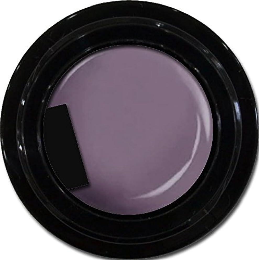 鎮静剤銀行経済カラージェル enchant color gel M507 KyotoMurasaki 3g/ マットカラージェル M507 京都むらさき 3グラム